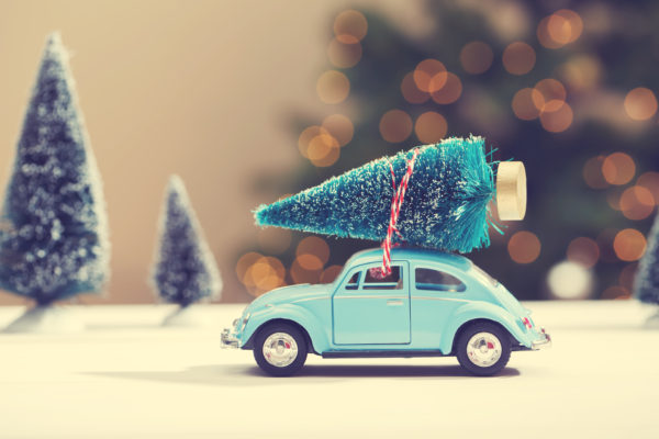 Car carrying a Christmas tree in a miniature evergreen forest